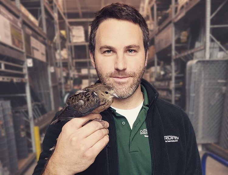 Bird removal technician